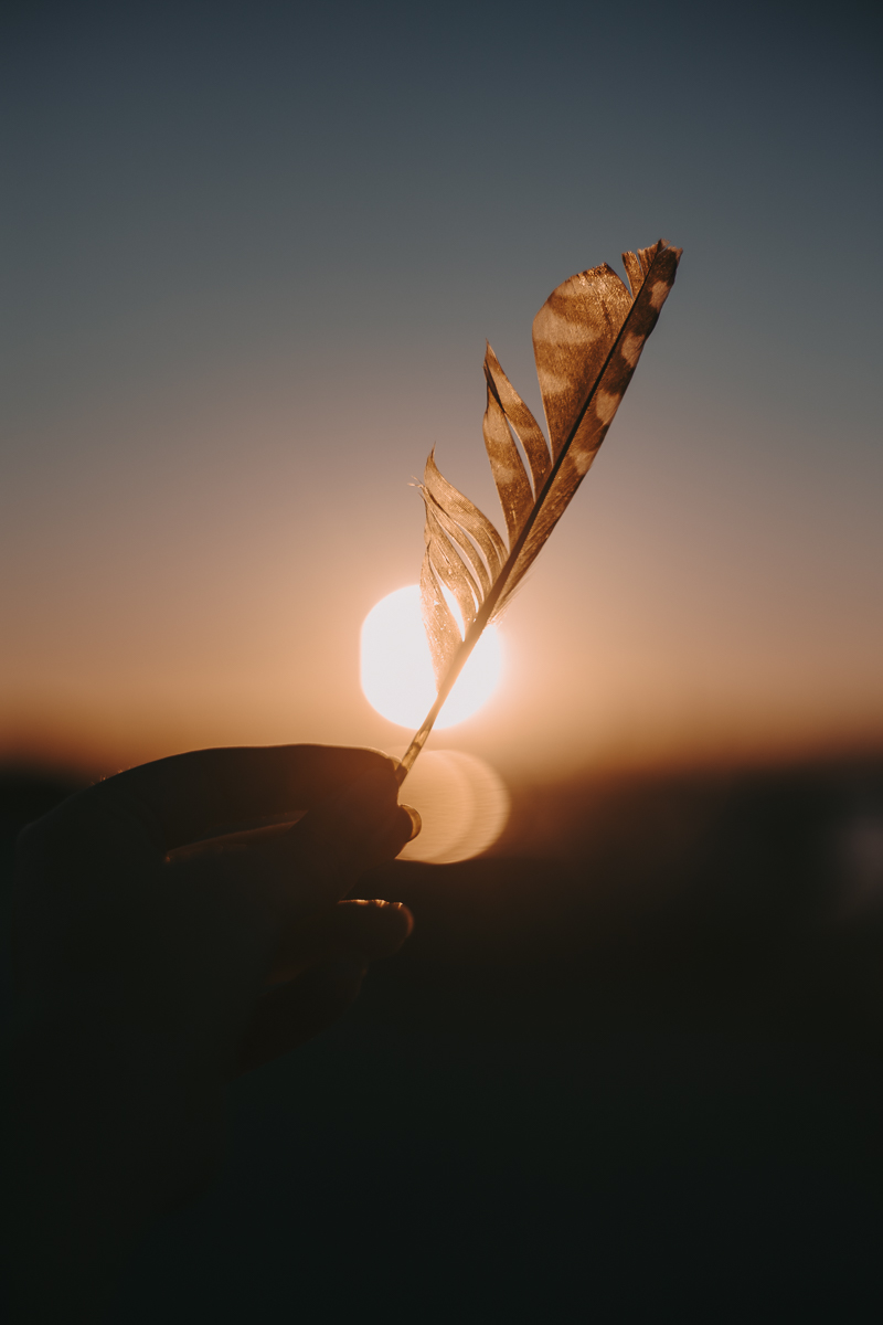 liberty is feather in the sunset